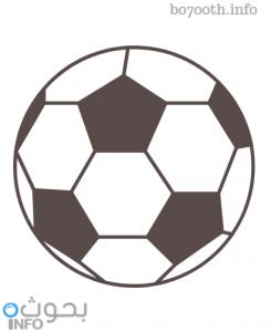 الرياضات الجماعية كرة القدم