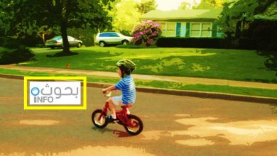 السلامة الطرقية