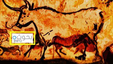 تاريخ الفن