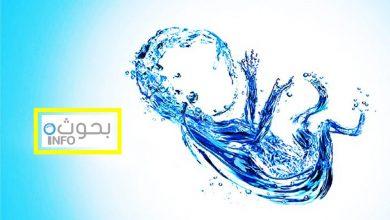 بحث حول أهمية الماء في الحياة