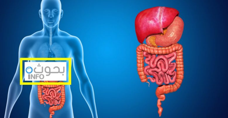 الأمراض التي تصيب الجهاز الهضمي