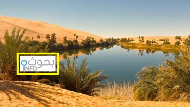 بحث حول تنمية البيئة الصحراوية